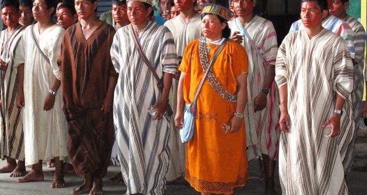 ashaninka